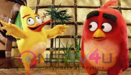 The Angry Birds Movie Exclusive Stills
