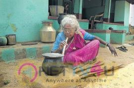 Vishal Helps To Actress Kollangudi Karuppayi Stills  Tamil Gallery