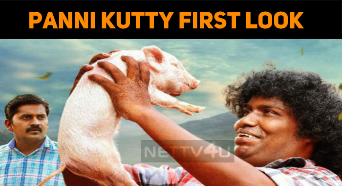 First Look Of Panni Kutty!