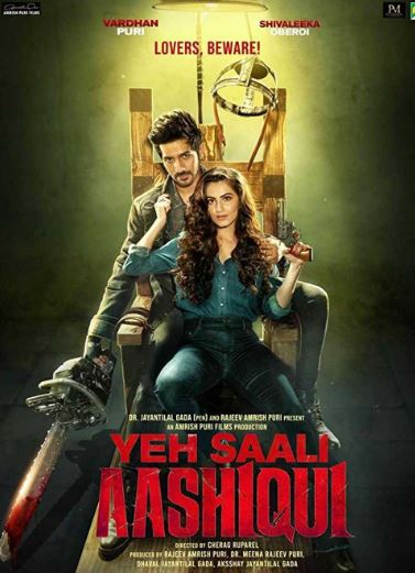 Yeh Saali Aashiqui Movie Review