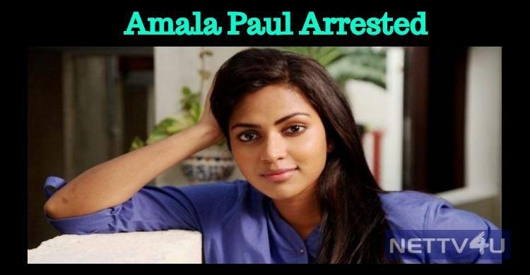 Amala Paul Arrested! Tamil News
