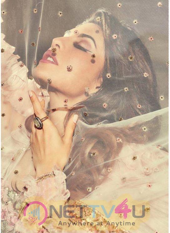 Actress Jacqueline Fernandez Fascinating Images