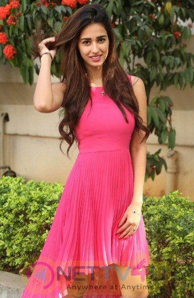 Actress Disha Patani Latest Hot And Sexy Pics
