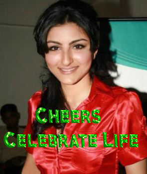 Cheers - Celebrate Life Movie Review Hindi Movie Review