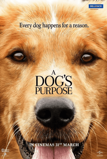 A Dog's Purpose Movie Review English Movie Review