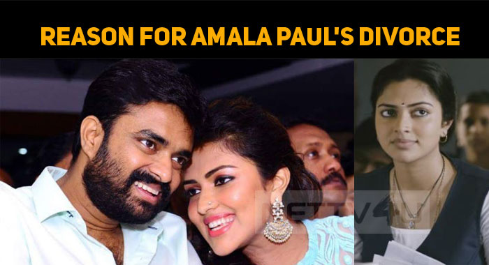 Amala Paul's Divorce And This Biggie Star Have A Connection?