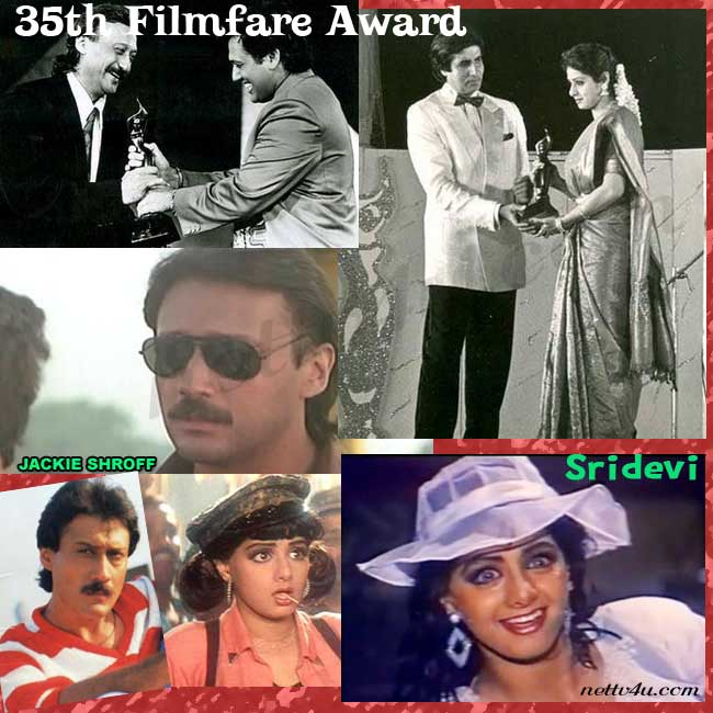 35th Filmfare Awards
