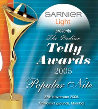 5th Indian Telly Awards