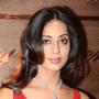 Mahi Gill Hindi Actress