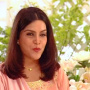 Zeenat Aman Hindi Actress