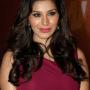 Sophie Choudry Hindi Actress