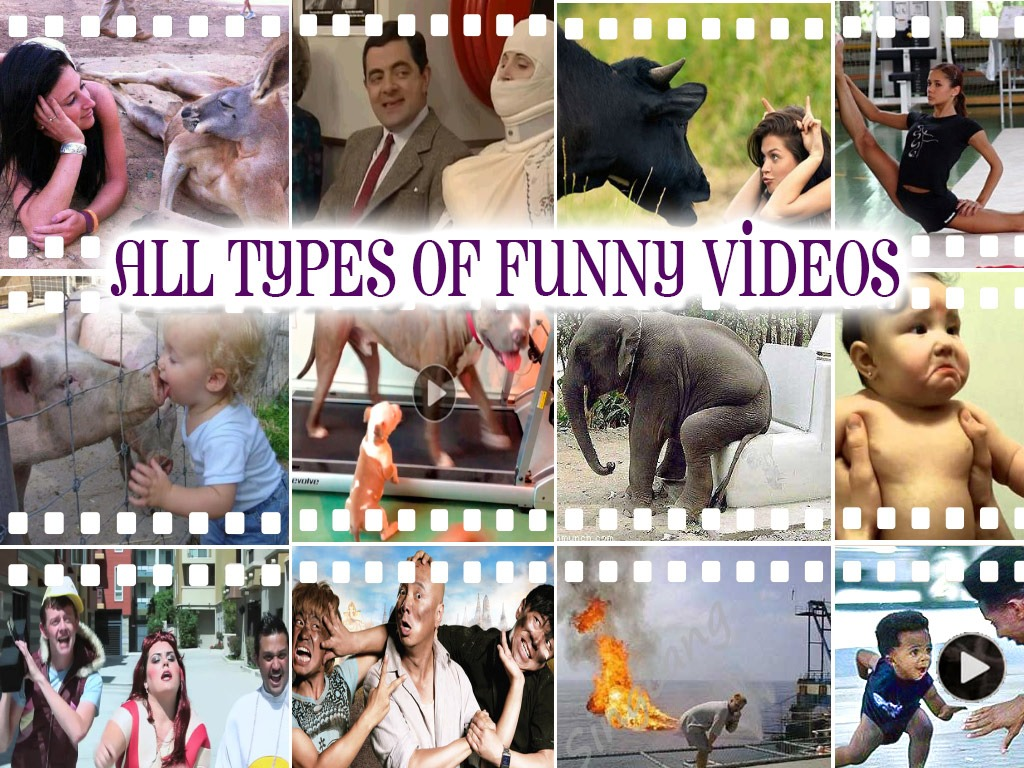 All Types Of Funny Videos