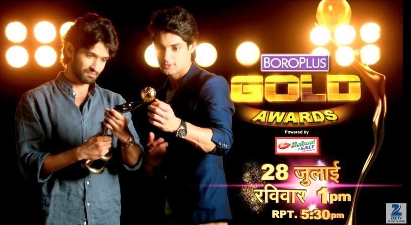 Zee Gold Awards 2013