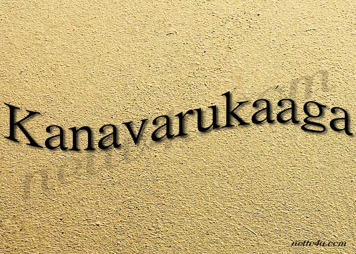 Kanavarukaaga