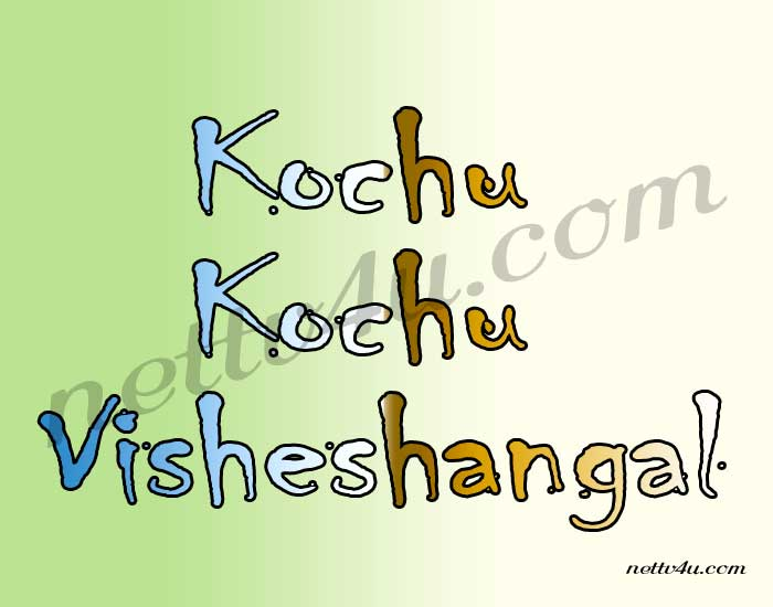 Kochu Kochu Visheshangal