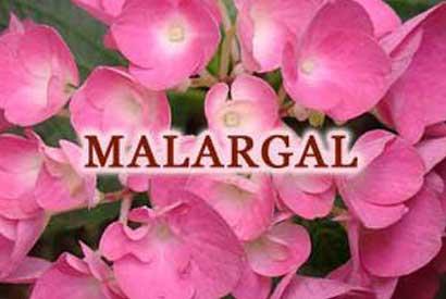 Malargal