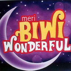 Meri Biwi Wonderful