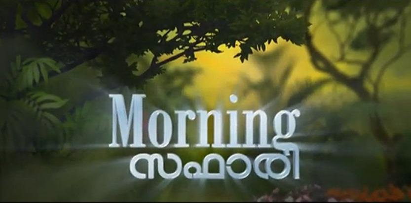 Morning Safari