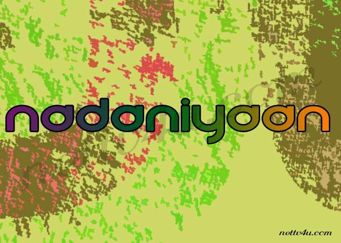 Nadaniyaan