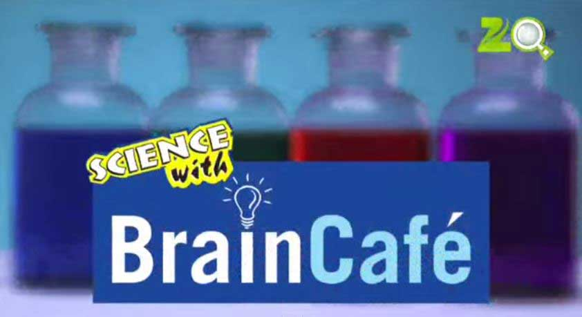 Science With Brain Cafe