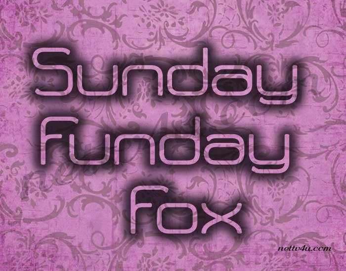 Sunday Funday Fox