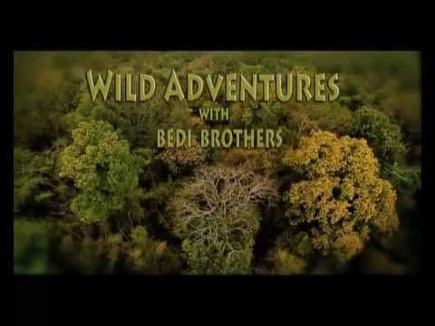 Wild Adventures Ballooning With Bedi Brothers