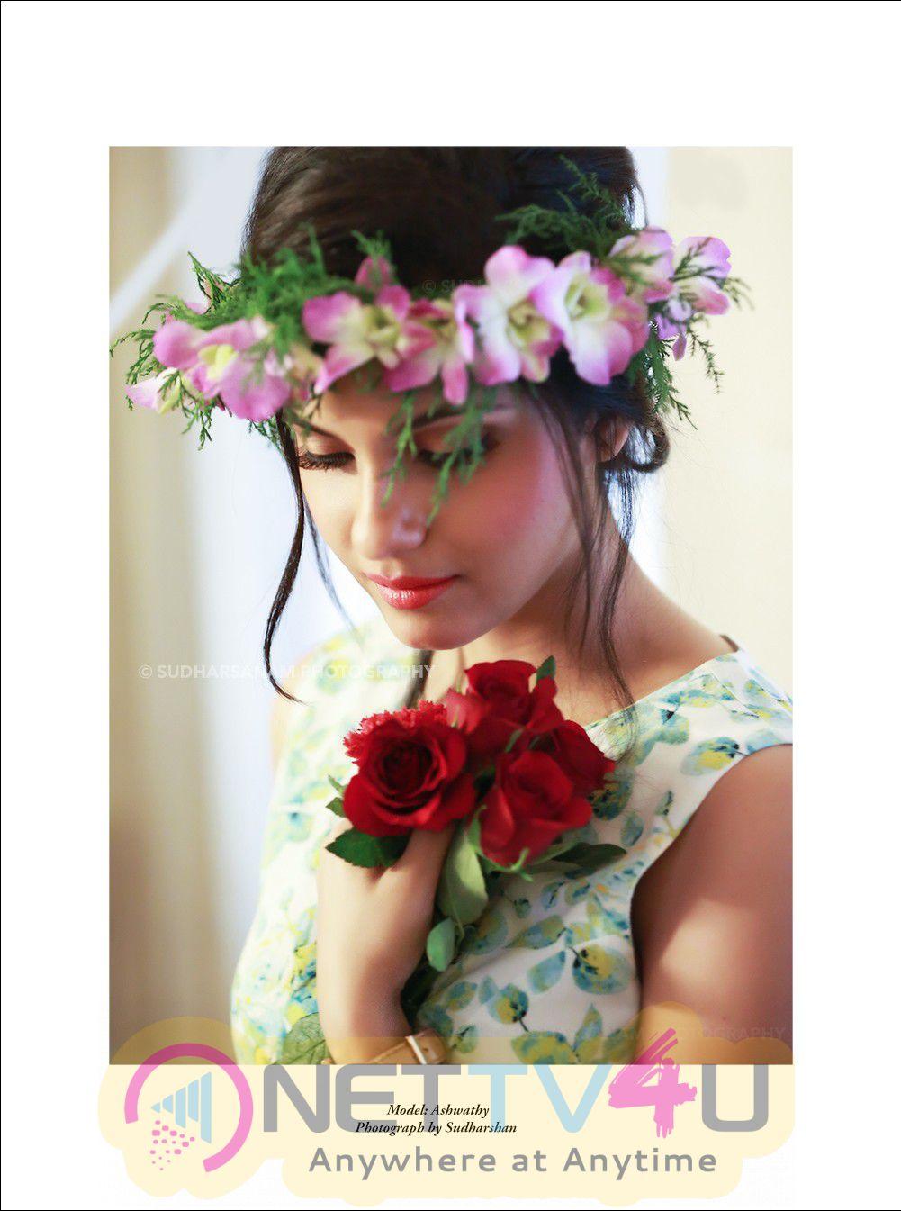 Actress Ashwathy Ravikumar High Quality Pics Tamil Gallery
