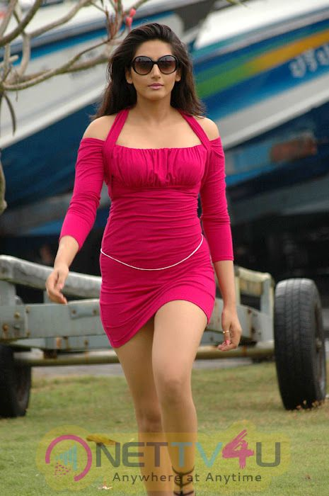 Actress Ragini Dwivedi Hot Glamour Stills Kannada Gallery