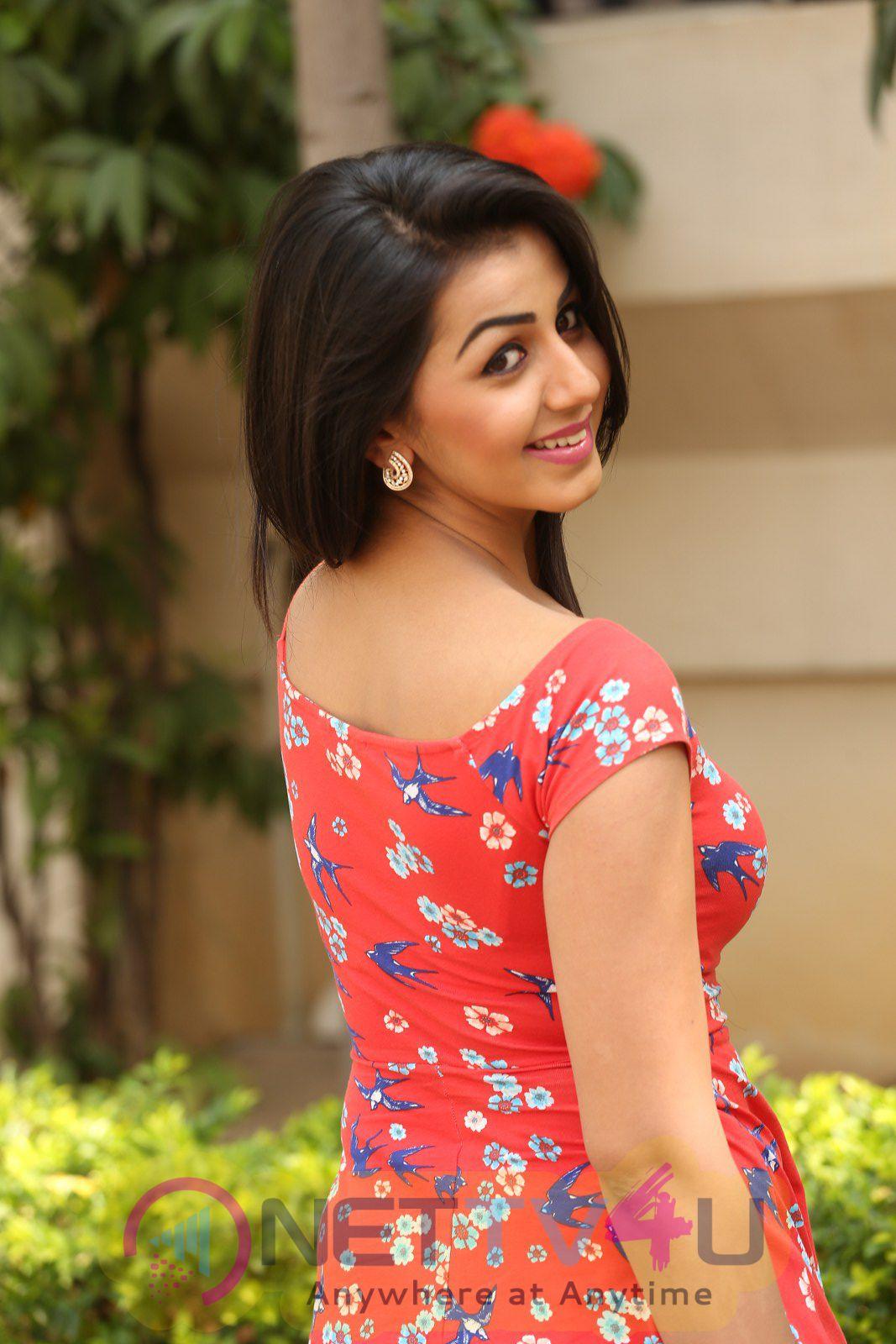 Nikki galrani hot photo imagesNikki Galrani Navel show - Pinterest Actress nikki hot photos