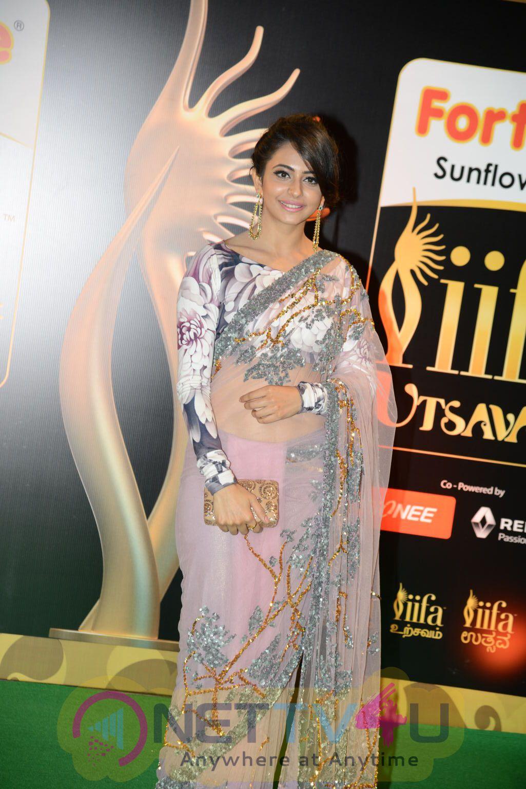Actress Rakul Preet Singh Exclusive Images @ IIFA Utsavam