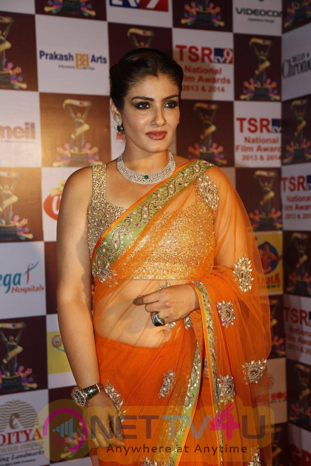 Actress Raveena Tandon In TSR TV9 National Film Awards Photos