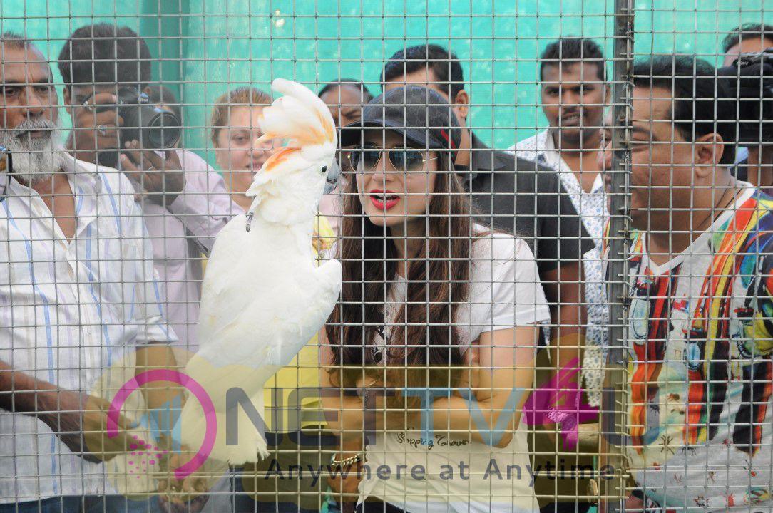 Ameesha Patel At Babloo's Zorang Exotic Pet Show In Mumbai Photo Gallery