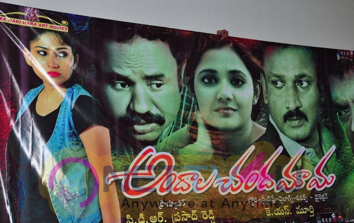Andala Chandamama Movie Press Meet Images