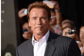 Arnold Schwarzenegger To Be Gunther In The Upco..