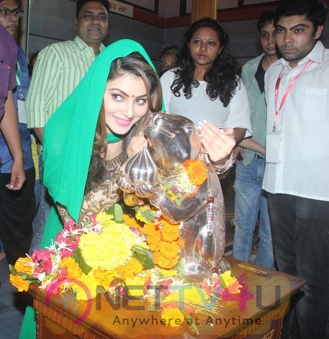 Bollywood Actress Urvashi Rautela Visits Andheri Cha Raja Stills Hindi Gallery