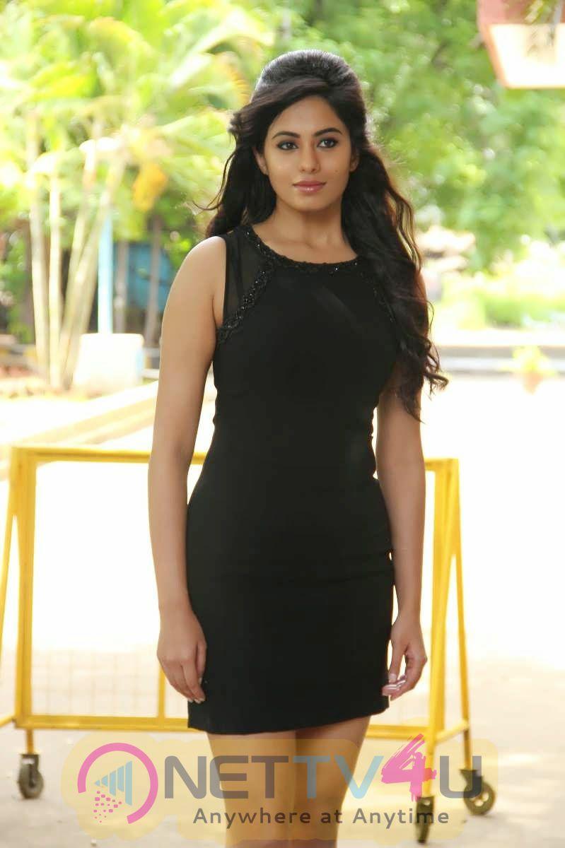 Deepa Sannidhi Hot Photo Gallery Tamil Gallery