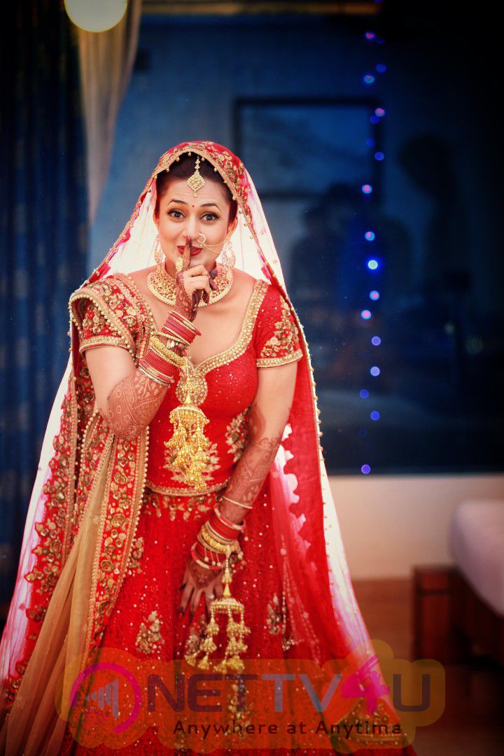 Divyanka Tripathi And Vivek Dahiya Amazing Wedding Photos Hindi Gallery