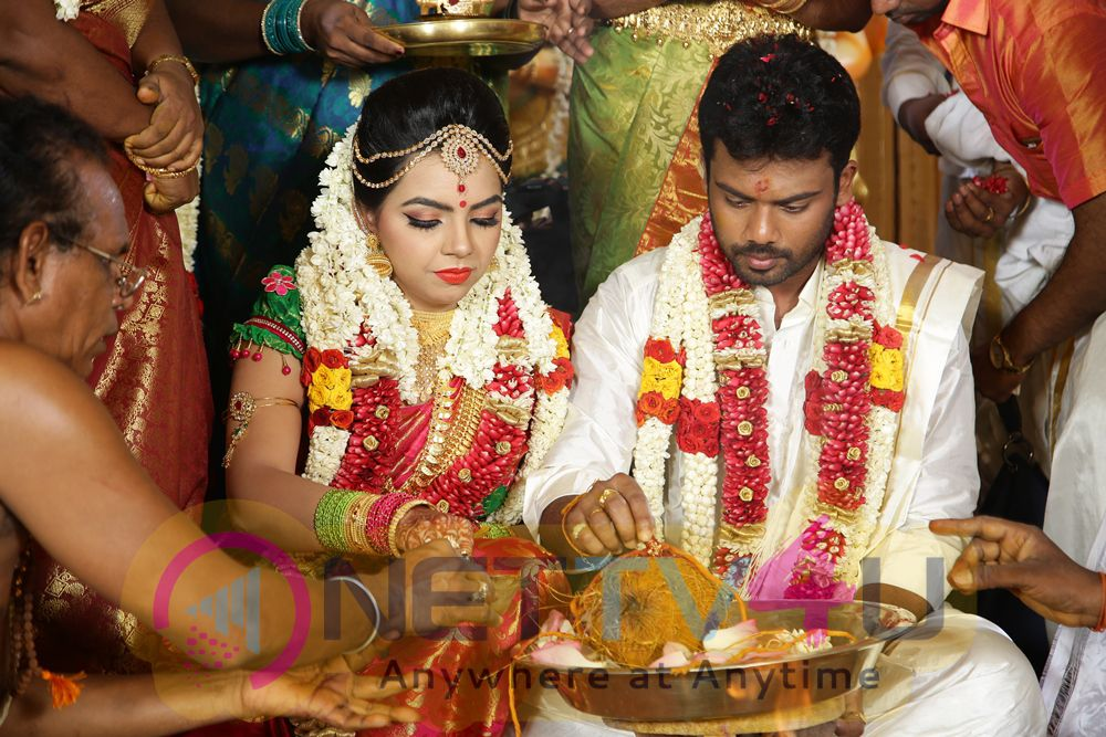 Director R. Pandiarajan Son Prithvirajan Weds Akshaya Wedding Reception Photos