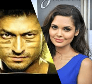 Esha Gupta Set Up To Romance A Commando In Movie Sequel