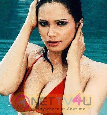 Hindi Actress Naina Dhaliwal High Qulaity Hot Images