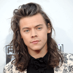 Harry Styles English Actor