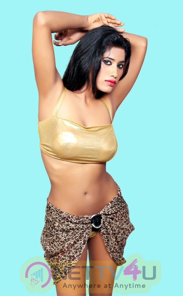 Hindi Actress Shabnam Syed Latest Hot Photo Shoot  Stills