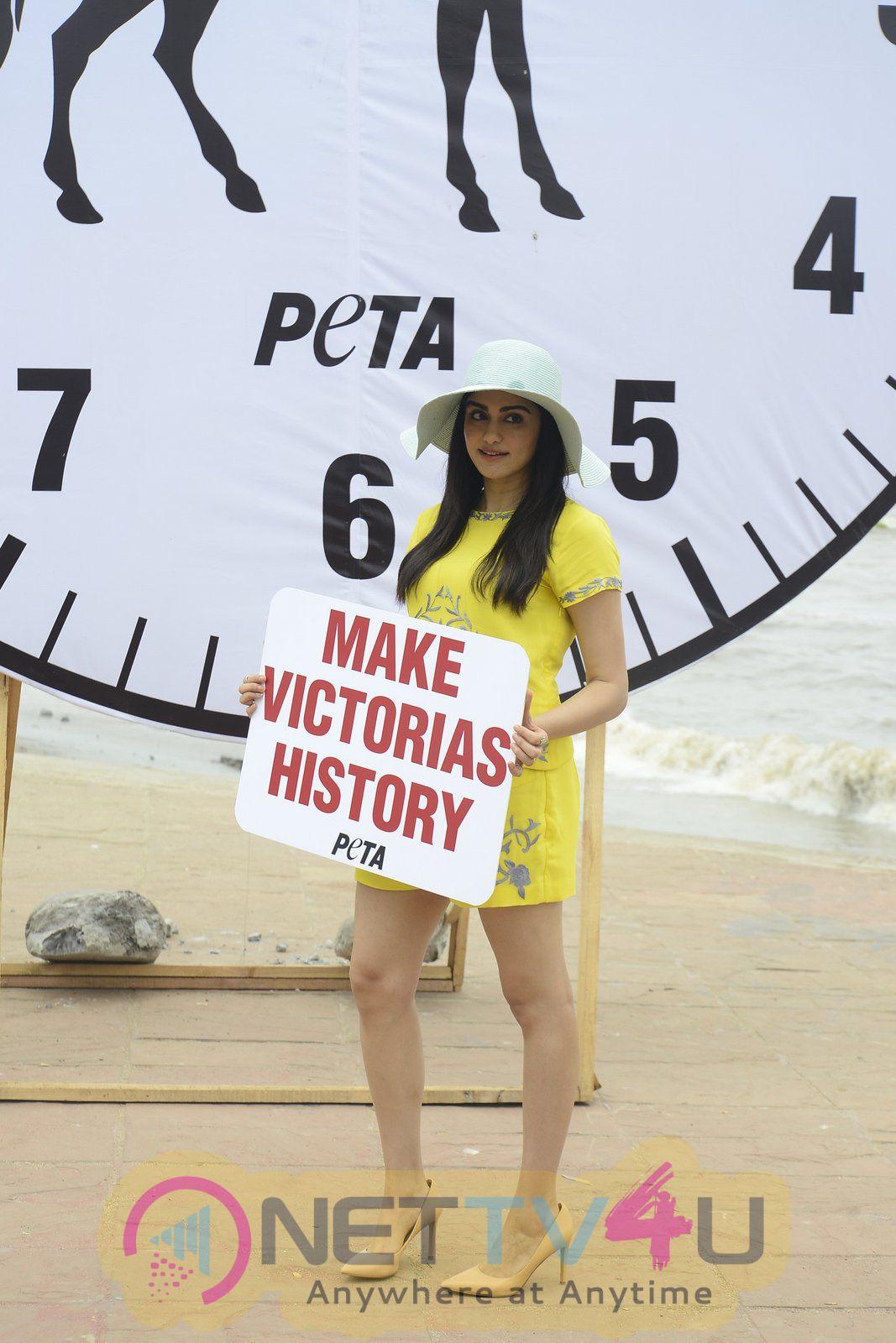 Images Of Adah Sharma For PETA On Carter Road Mumbai