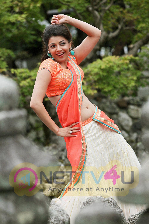 Jilla Movie Actress Kajal Agarwal Stills