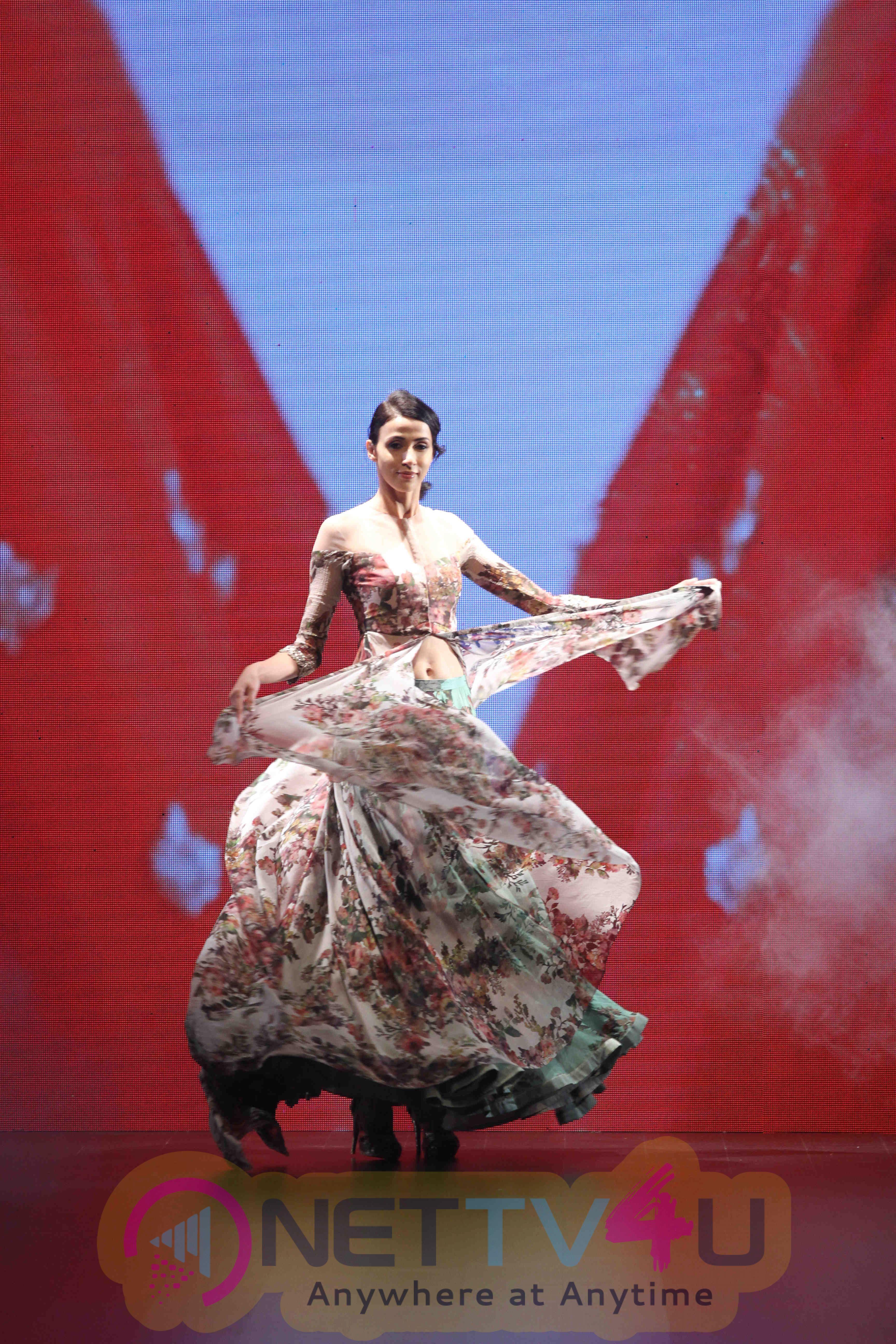 Lakme Fashion Week Winter Festive 2016 Anushree Reddy Beautiful Images