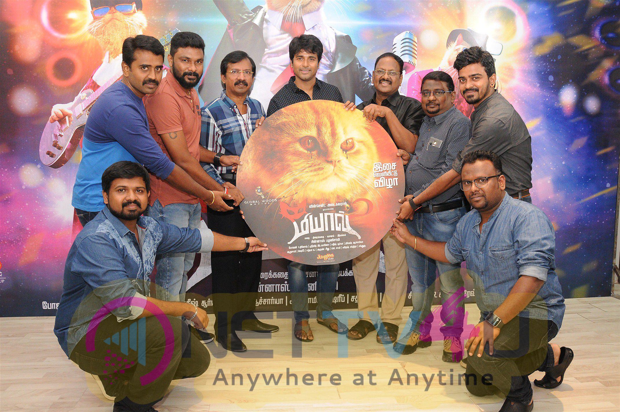 Meow Tamil Movie Audio Launch Photos