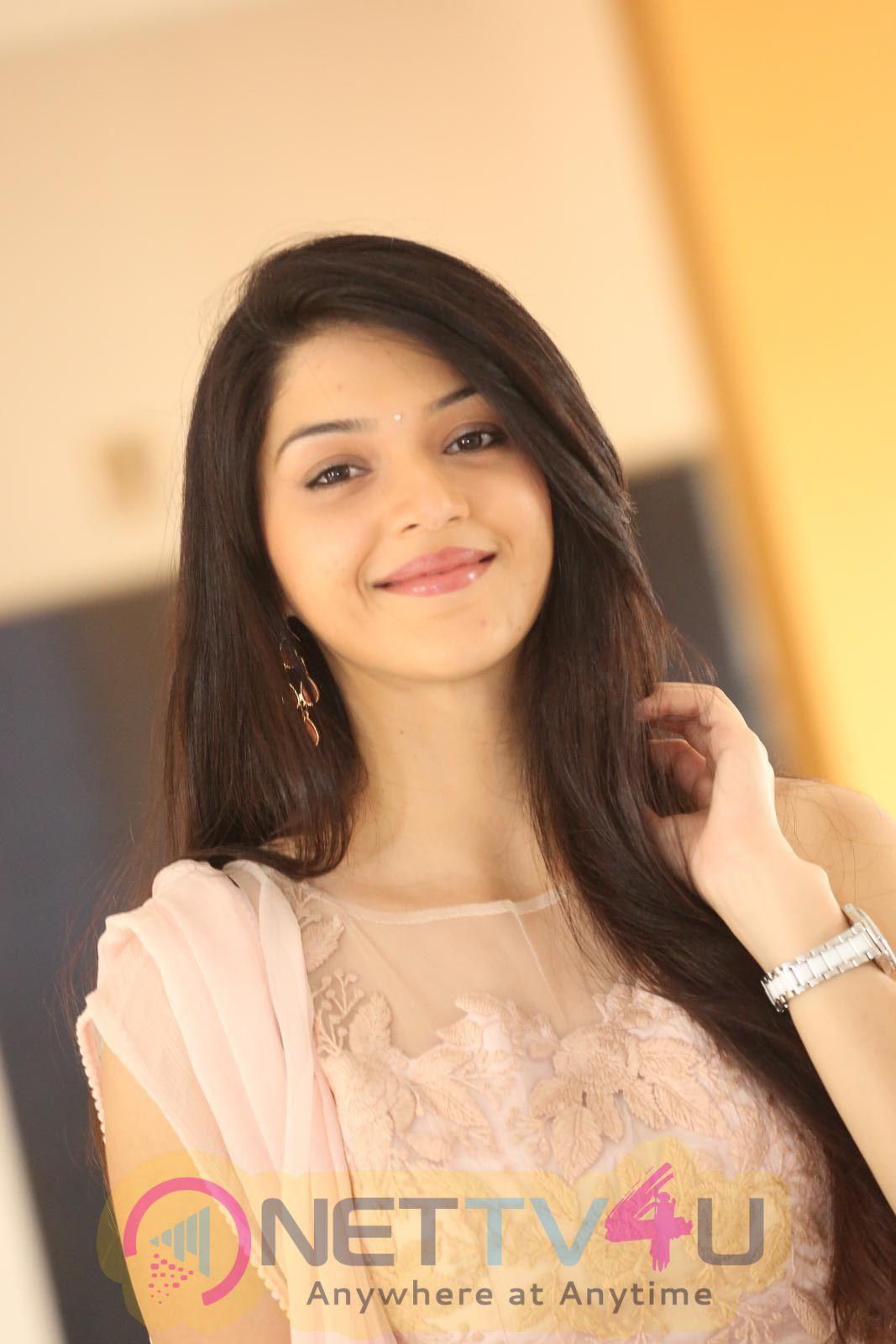 Mehrene Kaur Pirzada Latest Hot Photos Telugu Gallery