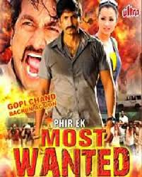 Most Wanted Movie Review Hindi Movie Review