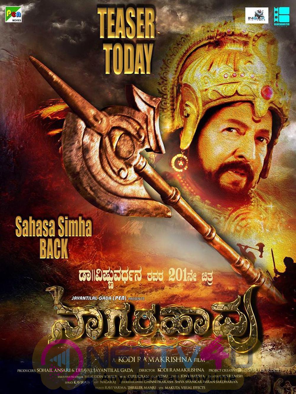 Nagarahavu Movie Exclusive Pictures Kannada Gallery