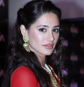 Nargis Fakhri Will Continue Her Career!